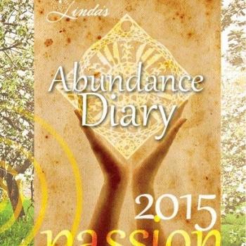 2015 Abundance Diary