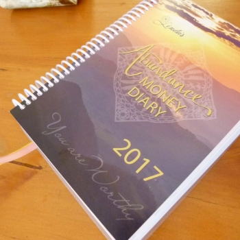 2017 Abundance Money Diary - Soft Cover