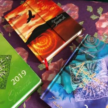 2019 Abundance Money Diary Journal 2020 Abundance Money Diary