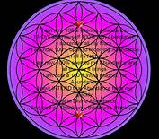 attract abundance with the flower of life