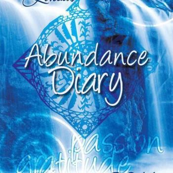 2011 Abundance Diary