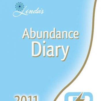 2011 Oshakati Premier Electric Abundance Diary